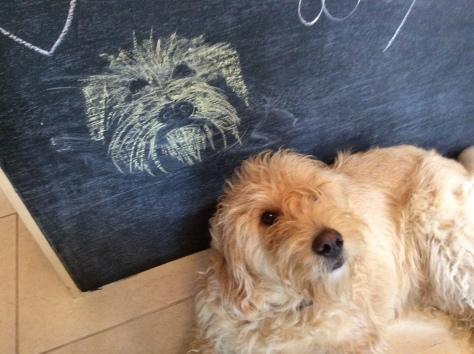 woody_chalk